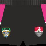 Arlecdon Masters Training Shorts – Pink