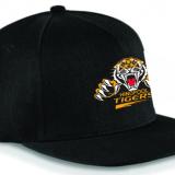 Hindpool Tigers Snapback